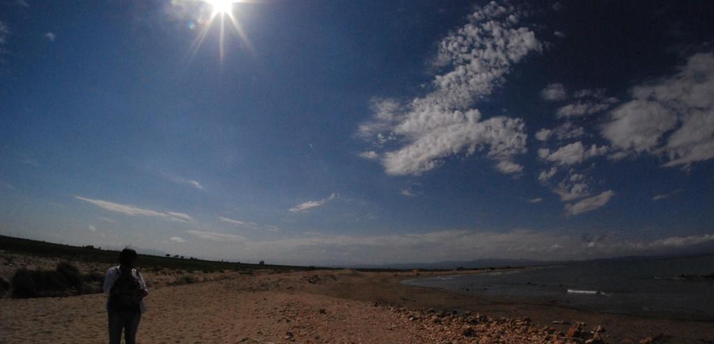 Deltebre (Pànoràmiques de la platge) (8)