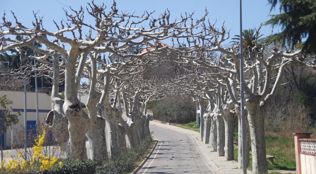 Hostalets de Pierola,Els  (39)