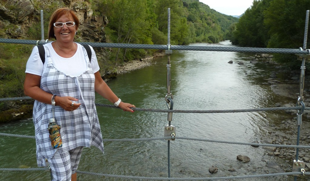 Rialp (Pont Penjat) (4)