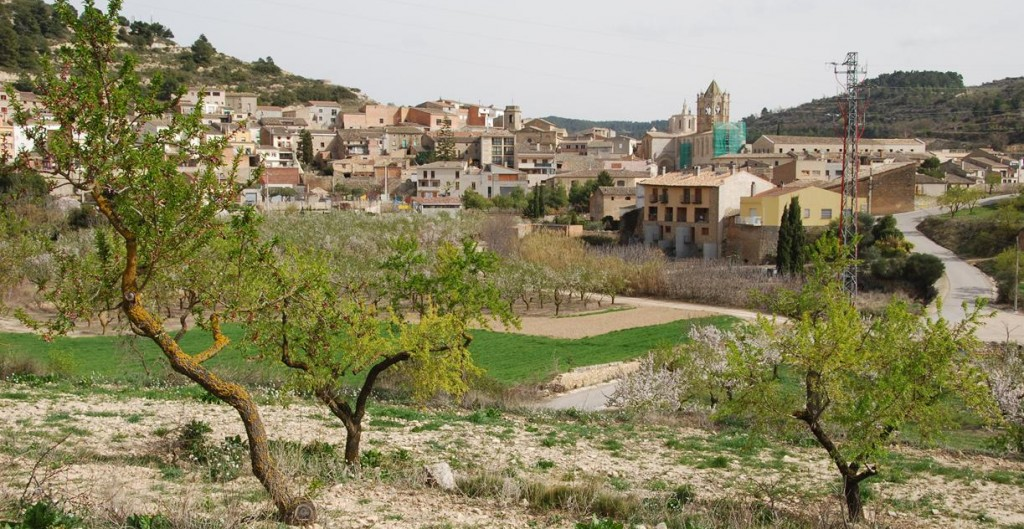 Vallbona de Les Monges (106)