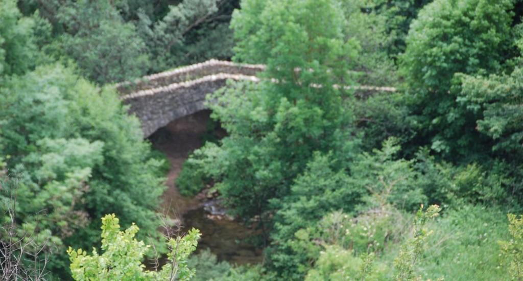Vallfogona de Ripollès (Pont Romànic) (2)